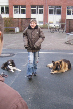 hundebesuch3
