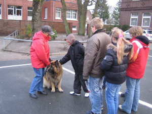 hundebesuch4